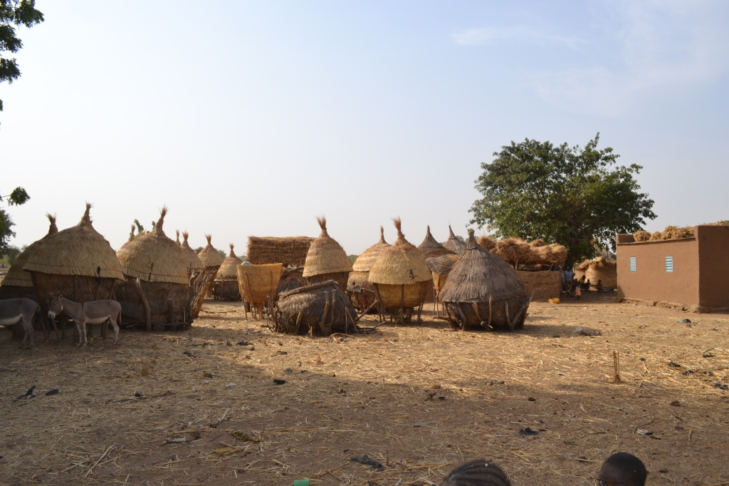 Burkina 2011 15