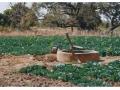 Burkina_10_008